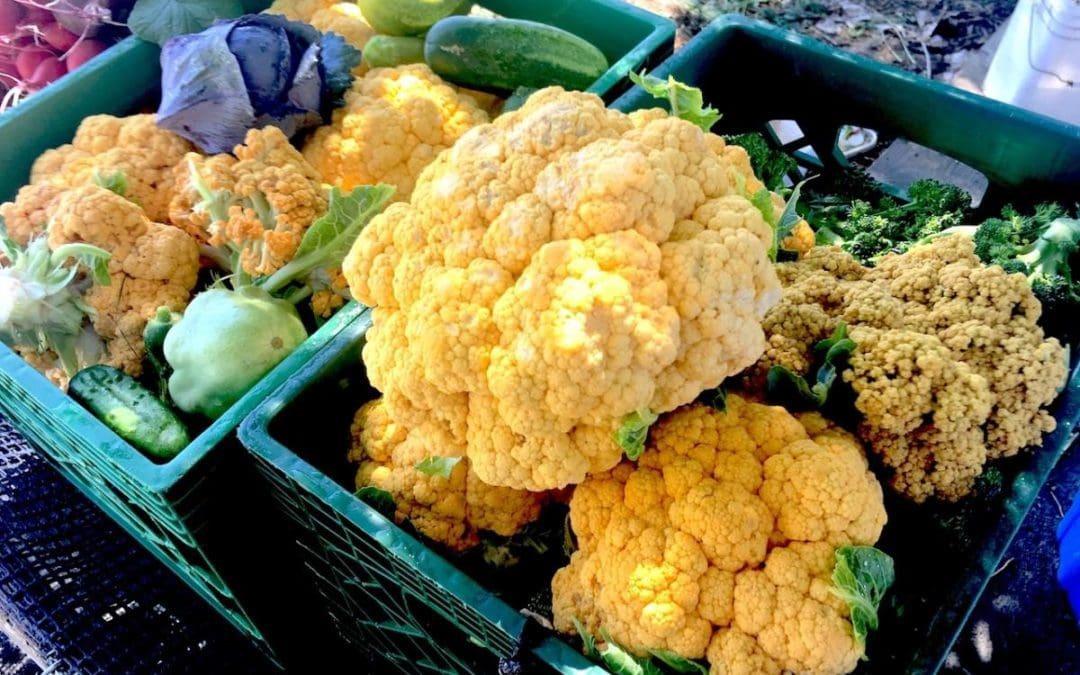 James Beard Dinner + Market Bounty = Weekend Culinary Harvest