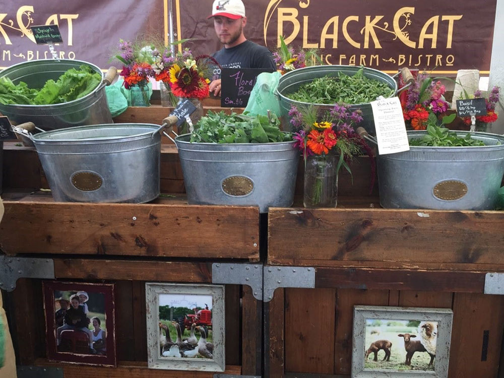 Black Cat Organic Farm Farmers Market Booth